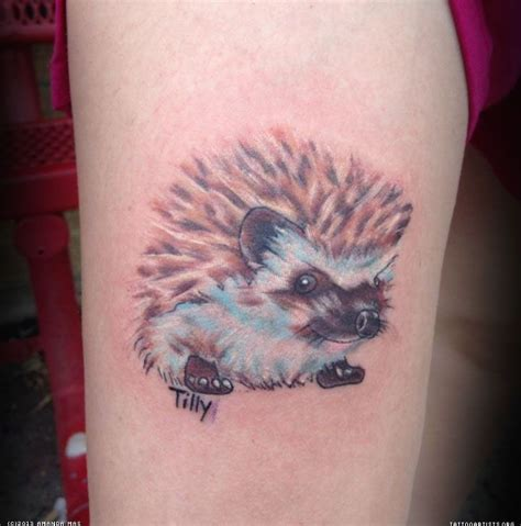 hedgehog tattoo 1000 ideas about hedgehog on tattoos