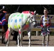 Horse Fancy Dress Ideas Twister