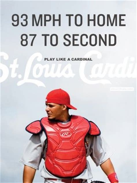 shelter st louis 8 best sports images on cardinals baseball st louis cardinals and