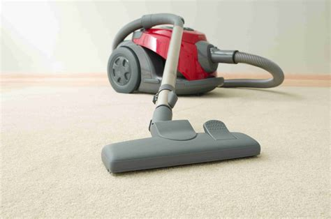 Which Dyson Vacuum Is Right For Thick Carpet - vacuum for smartstrand carpet home the honoroak
