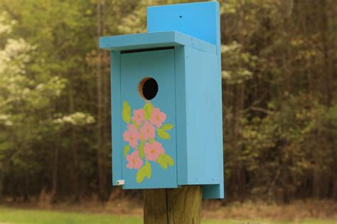 how to build a bluebird house plans numberedtype