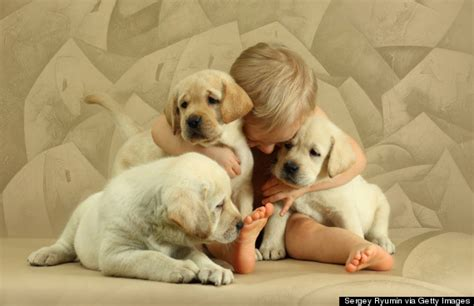 hugging puppies 7 reasons why we should be giving more hugs huffpost
