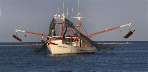 boats for sale in north ms biloxi shrimp industry gulf seafood news