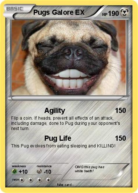 what are dantdm s pugs names pok 233 mon pugs galore ex agility my card
