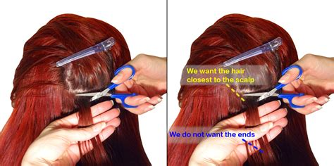step by step hair cutting instructions hair cutting steps hair is our crown