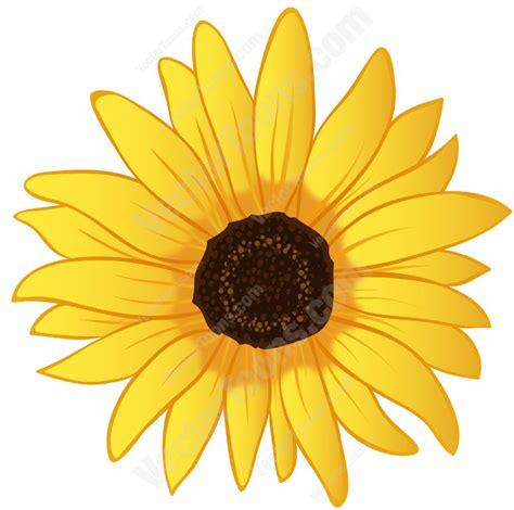 Benih Bunga Matahari Sunflower 4 bunga matahari vector clipart best