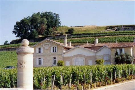 chateau pavie 171 domaine de chevalier 2008 et ch 226 teau pavie 1975 du