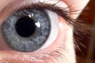 blue eye colors file blue eye jpg wikimedia commons