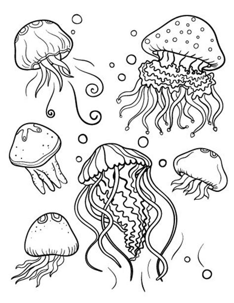 Printable Jellyfish Coloring Page Free Pdf Download At Jelly Fish Coloring Pages