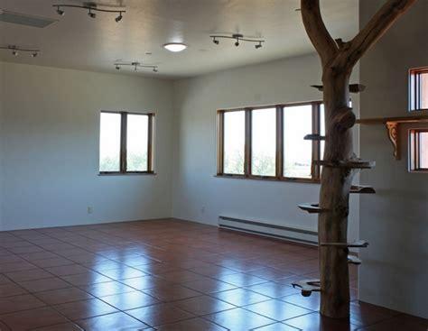 indoor cat tree home design garden architecture blog