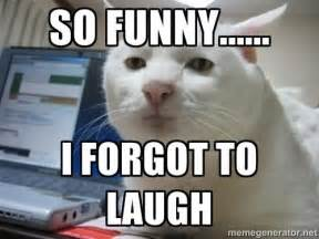 Hysterical Laughing Meme - laugh meme www imgkid com the image kid has it