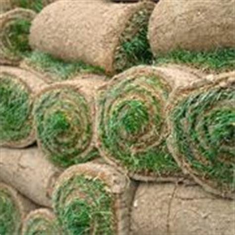 prezzo tappeto erboso il tappeto erboso tecniche di giardinaggio il tappeto