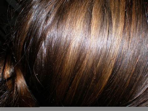 highlights and lowlights for brunettes highlights and lowlights hair styles pinterest