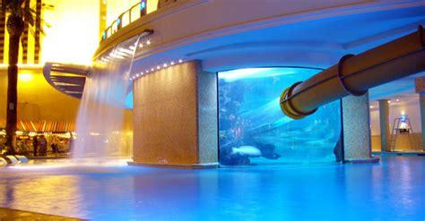 infinity aquarium design las vegas nv 12 amazing hotel pools you need to jump in the aquagear