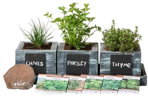 herb garden gift ideas 15 thoughtful 60th birthday gift ideas for hahappy