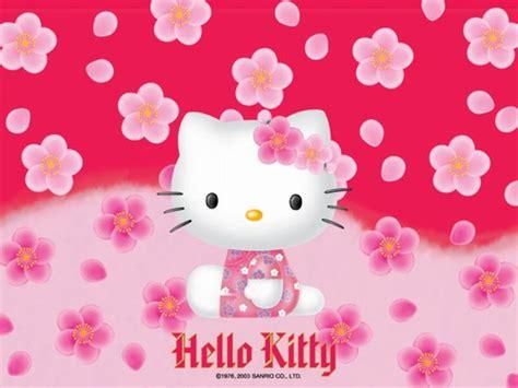 kitty imagenes grandes de kitty imagenes grandes imagui