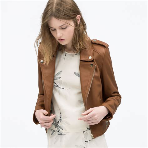 ladies brown biker brown ladies coats jacketin