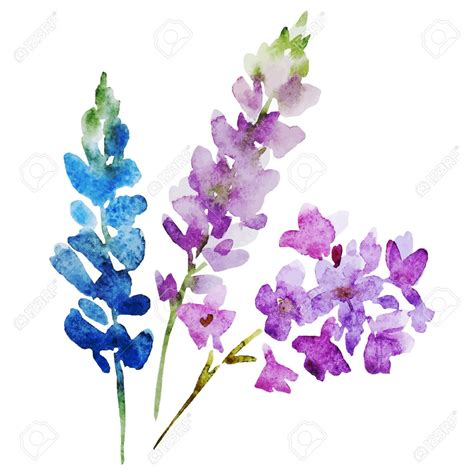 water color flowers image result for watercolor flowers watercolor
