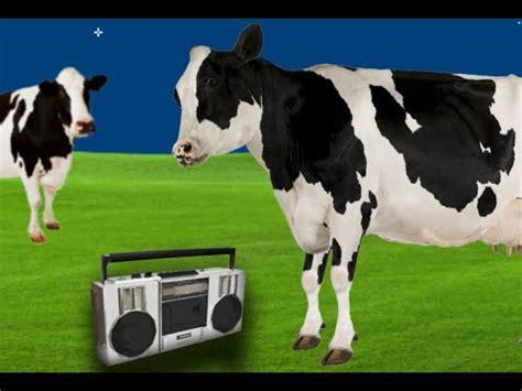 boat crash dubstep remix cow fail dubstep doovi