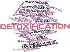 Whats Another Word For Detox by Do Detox Diets For Weight Loss Work Or Are They Just