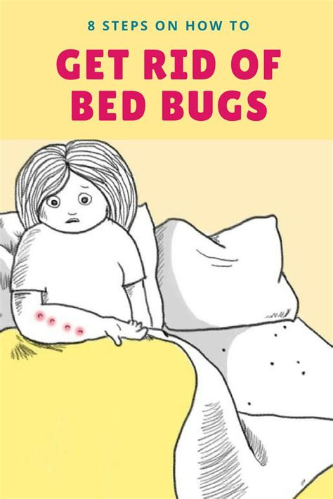 how to get bed bugs out of your bed 25 unique bed bugs ideas on pinterest bed bug spray