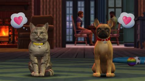 cat puppy the sims 4 pets cats and dogs expansion pack guide
