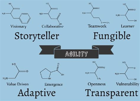 The Agile Mba Review by Mba047 The Dna Of A Great Agile Business Analyst