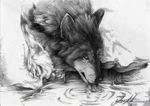 How To Draw A Table 10 Cool Wolf Drawings For Inspiration Hative