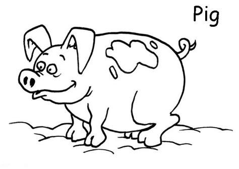 large pig coloring page mi cuadernillo de ingl 233 s animales dom 233 sticos para colorear