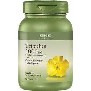 Un Tribulus Terrestris 90 Capsul gnc herbal plus tribulus 1000 mg 90 capsule 90 capsule