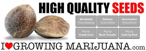 marijuana seed bank reviews i growing marijuana review april 2018 best seed bank