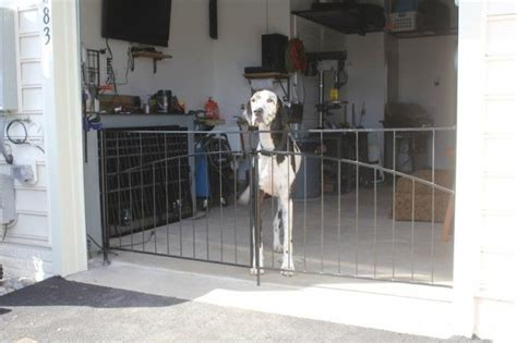 interior gates home interior pet gates as a specialty fence you ll find useful