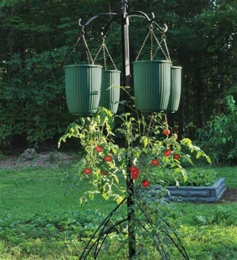 17 Best Images About Hanging Fruit Vegetable Container Hanging Vegetable Garden