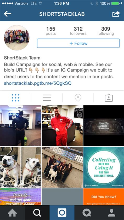 bio instagram enter 4 things you must do before hosting an instagram contest