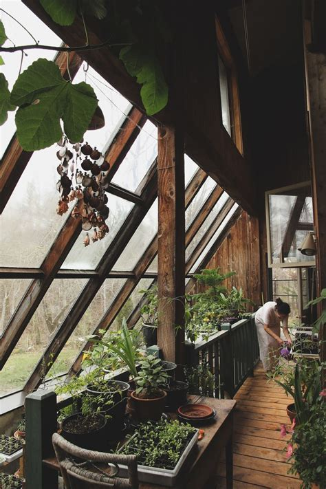 Window Sill Greenhouse Inspiration 25 Best Ideas About Indoor Window Garden On Herb Garden Indoor Indoor Herbs And