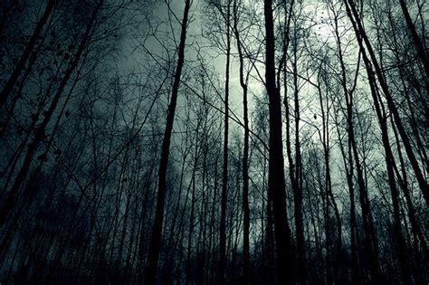 dark forest night image1 jpg image dark forest night image 31001 jpg creepypasta