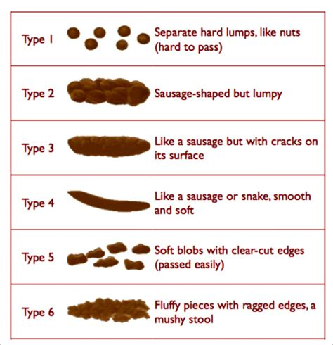 Gallbladder And Green Stool by Stool Color Chart 6 Free For Pdf