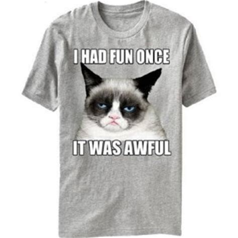 Grumpy Cat Meme I Had Fun Once - i had fun once it was awful grumpy cat t shirt