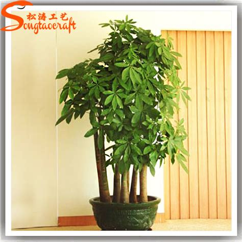 decorative fake trees for the home all types of decorative indoor plants plastic plants