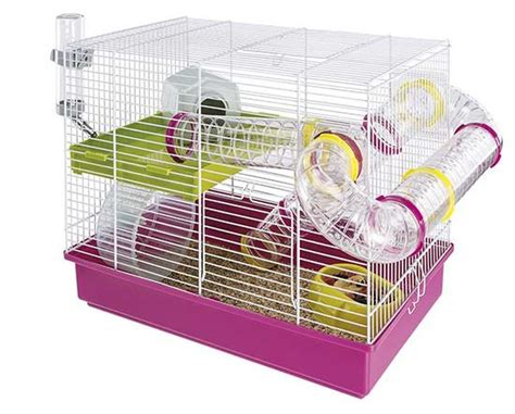 best hamster cage top choices for syrian and dwarf hamsters