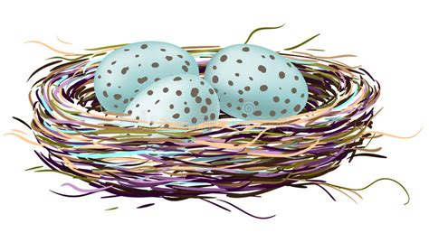 Gradient Nest birds nest with robin eggs stock vector illustration of color 34595555