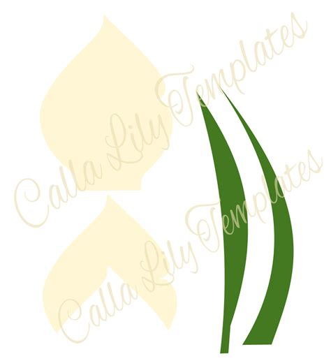 calla template freebie friday welcome springtime with calla lilies