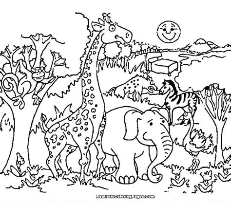 wildlife coloring pages detailed animal coloring pages at getcolorings free