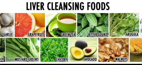 12 Day Liver Detox Diet by Clean Your Liver Thecarpets Co
