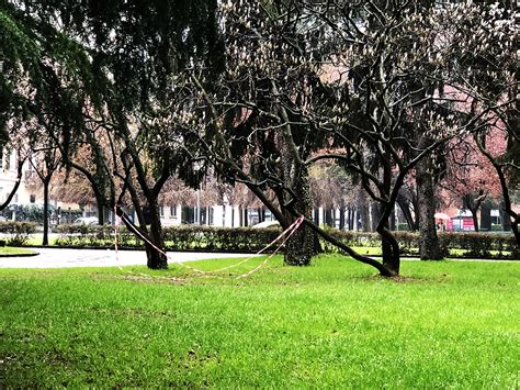 i giardini al lago recintate i giardini a lago passerete alla storia il