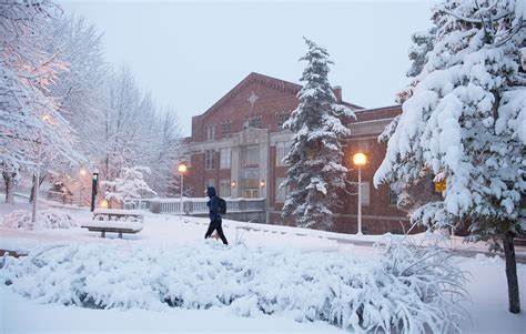 picture of snow 2 snow wsu news washington state university