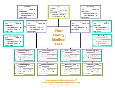 Printable Medical Family Tree | 10 best images of family tree chart genealoy family tree