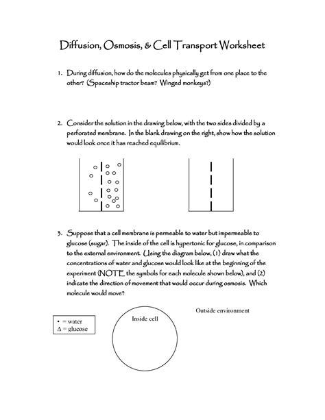 Looking Inside Cells Worksheet by 10 Best Images Of Looking Inside Cells Worksheet Answers