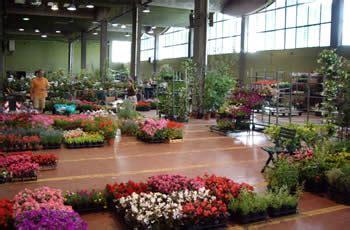 mercato dei fiori torino storia mercato dei fiori torino