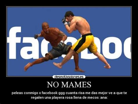imagenes chingonas para subir facebook frases chingonas nuevas related keywords frases